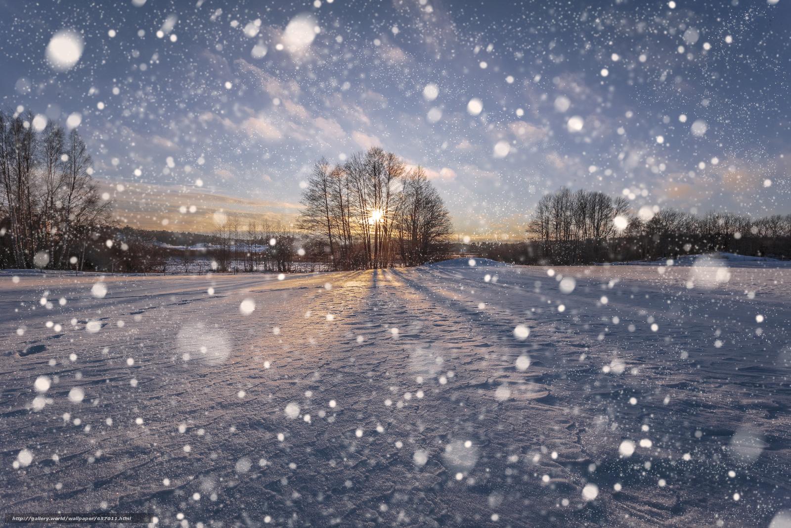 Scaricare gli sfondi inverno tramonto nevicata alberi for Immagini inverno sfondi
