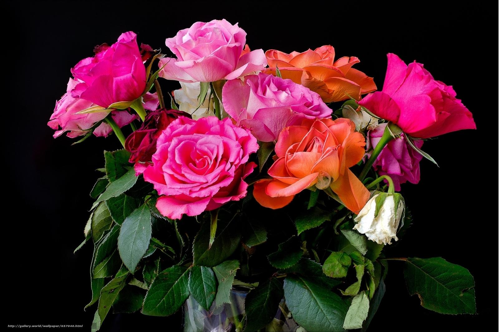 Скачать обои розы,  букет,  флора бесплатно для рабочего стола в разрешении 2041x1359 — картинка №657040