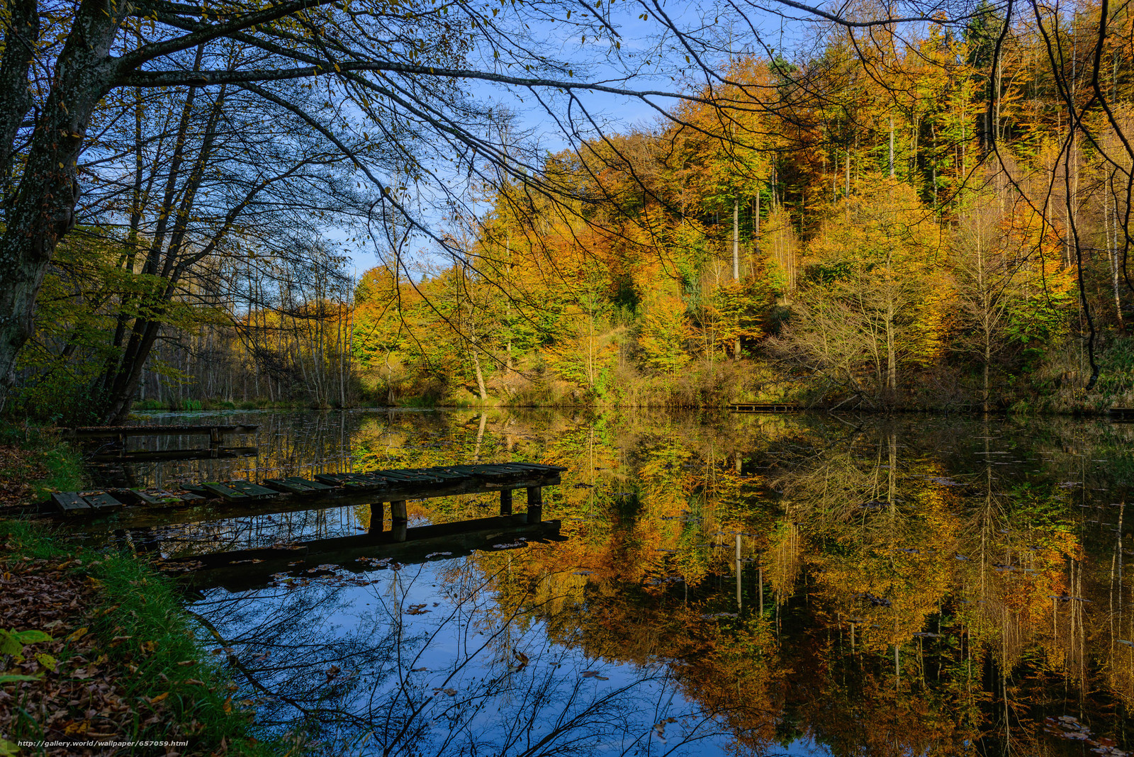 Download Hintergrund Herbst,  See,  Wald,  Bäume Freie desktop Tapeten in der Auflosung 2048x1367 — bild №657059