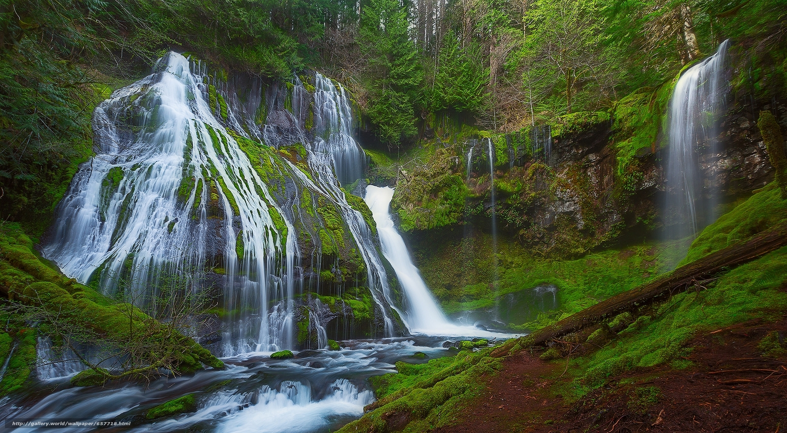 Download Hintergrund Panther Creek Falls,  Gifford Pinchot National Forest,  Wald,  Bäume Freie desktop Tapeten in der Auflosung 2048x1128 — bild №657718