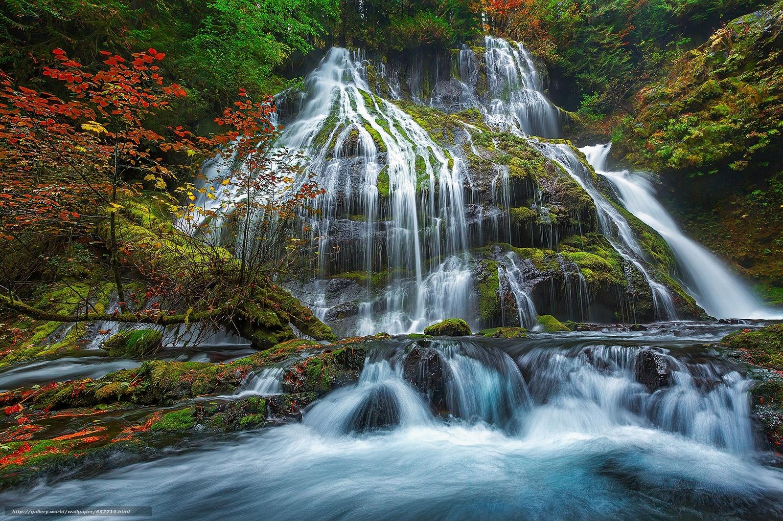 Скачать обои Panther Creek Falls,  Gifford Pinchot National Forest,  лес,  деревья бесплатно для рабочего стола в разрешении 2048x1365 — картинка №657719