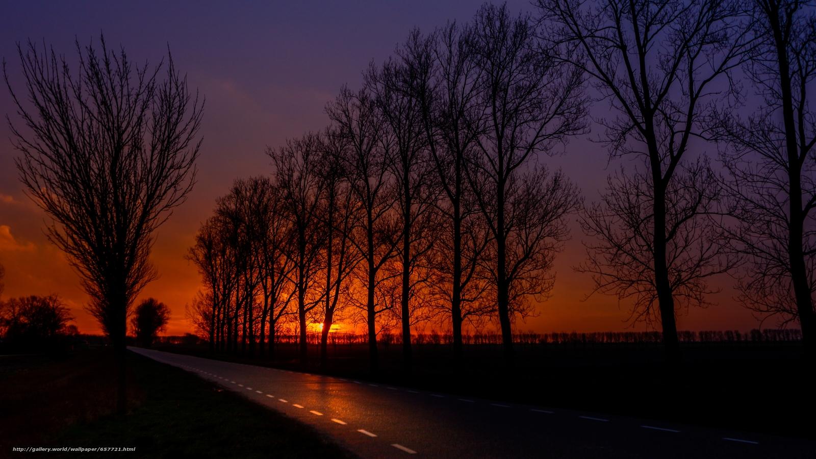 Descargar gratis puesta del sol,  carretera,  campo,  árboles Fondos de escritorio en la resolucin 3641x2048 — imagen №657721