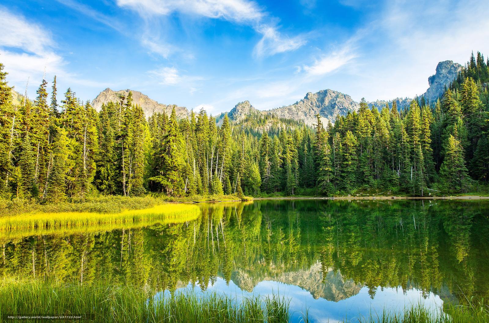 Descargar gratis lago,  Montañas,  árboles,  paisaje Fondos de escritorio en la resolucin 2048x1350 — imagen №657723
