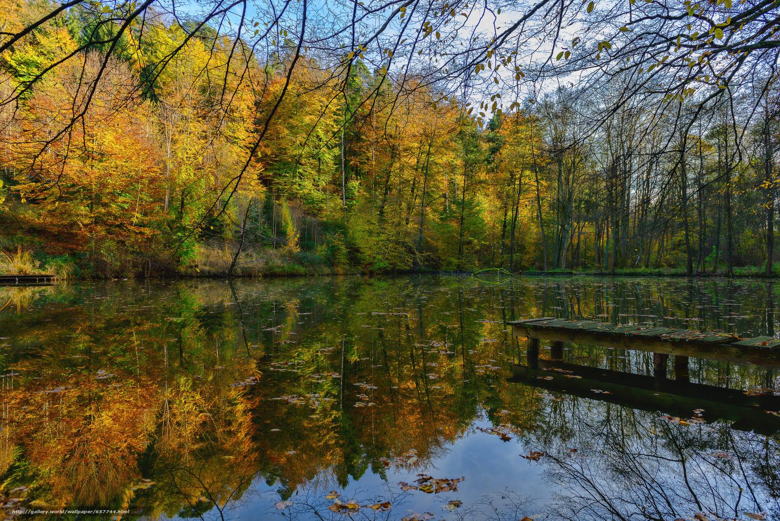 Скачать обои озеро,  осень,  лес,  деревья бесплатно для рабочего стола в разрешении 2048x1367 — картинка №657744