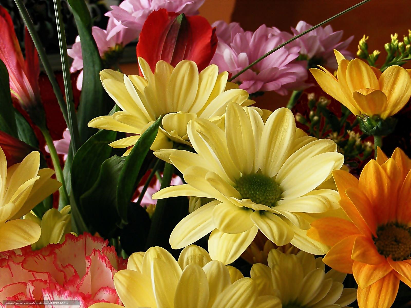 Скачать обои цветы,  букет,  флора бесплатно для рабочего стола в разрешении 3072x2304 — картинка №657765