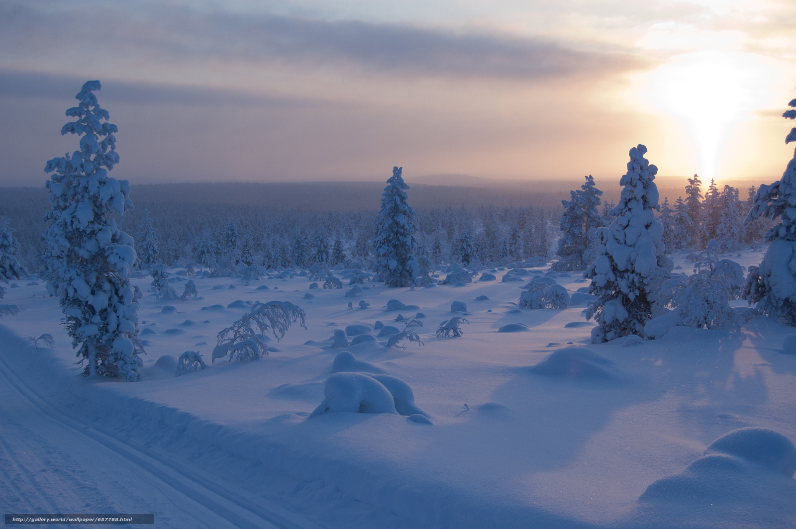 Download wallpaper sunset,  winter,  trees,  drifts free desktop wallpaper in the resolution 3008x2000 — picture №657788