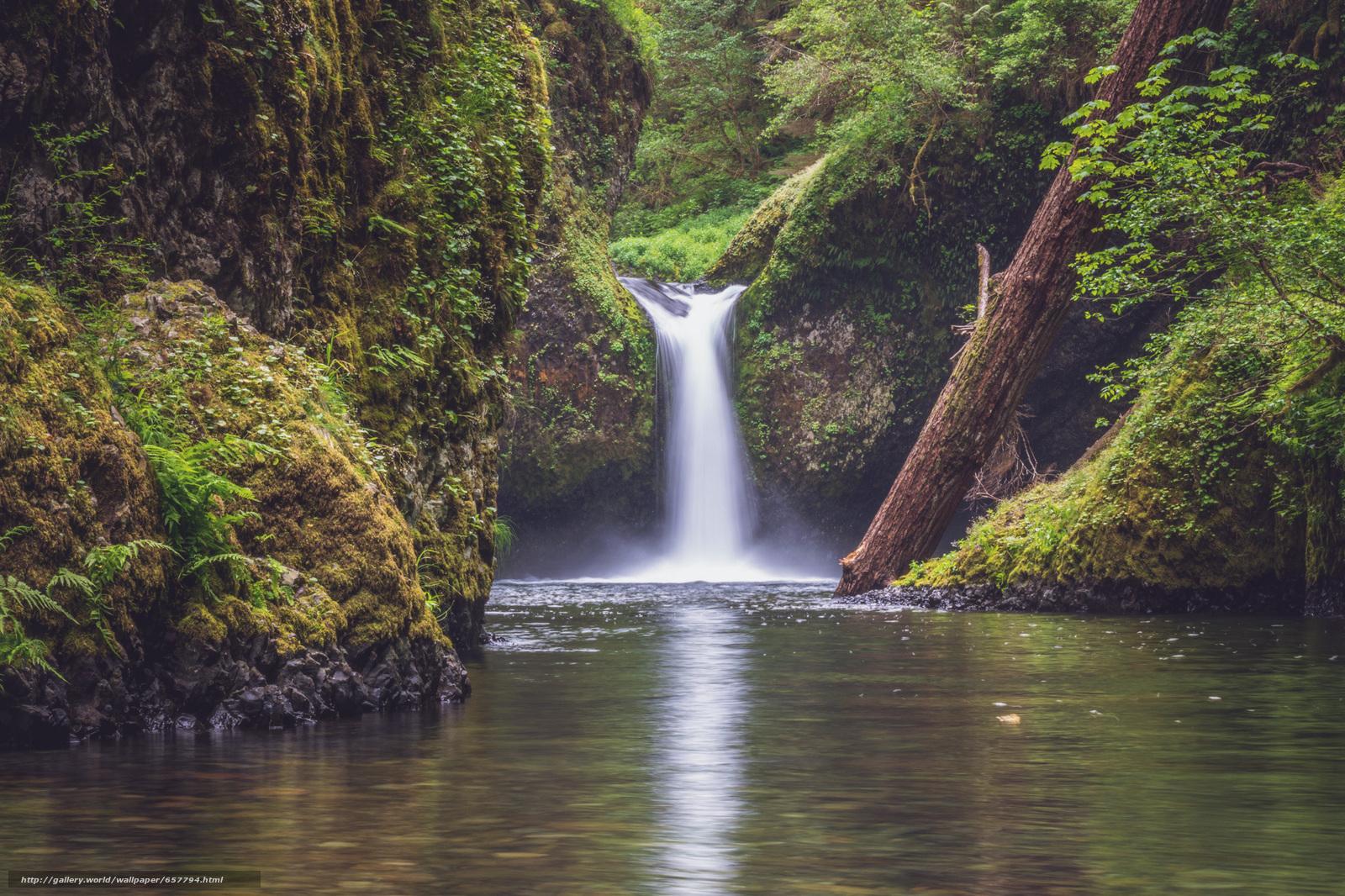 Скачать обои Punchbowl Falls,  Columbia River Gorge,  водопад,  река бесплатно для рабочего стола в разрешении 2000x1333 — картинка №657794