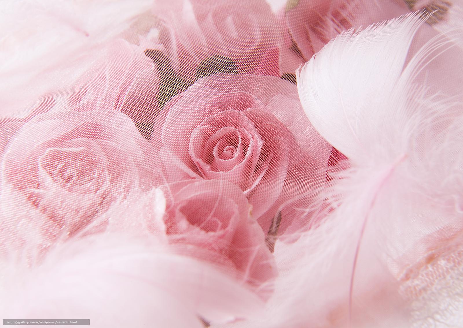 Скачать обои цветы,  цветок,  роза,  розы бесплатно для рабочего стола в разрешении 2950x2094 — картинка №657821