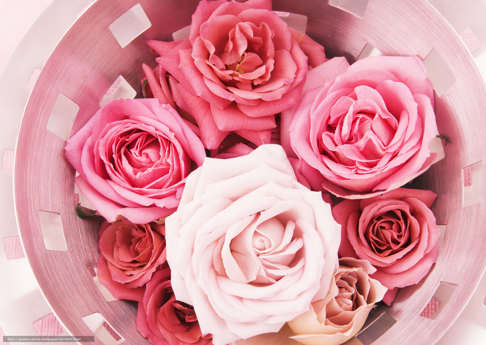 Скачать обои цветы,  цветок,  роза,  розы бесплатно для рабочего стола в разрешении 2950x2094 — картинка №657824