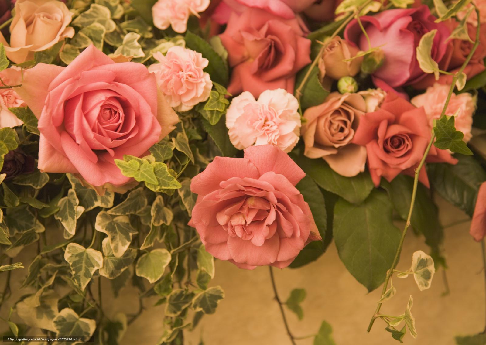 壁紙をダウンロード フラワーズ,  花,  ローズ,  バラ デスクトップの解像度のための無料壁紙 2950x2094 — 絵 №657830