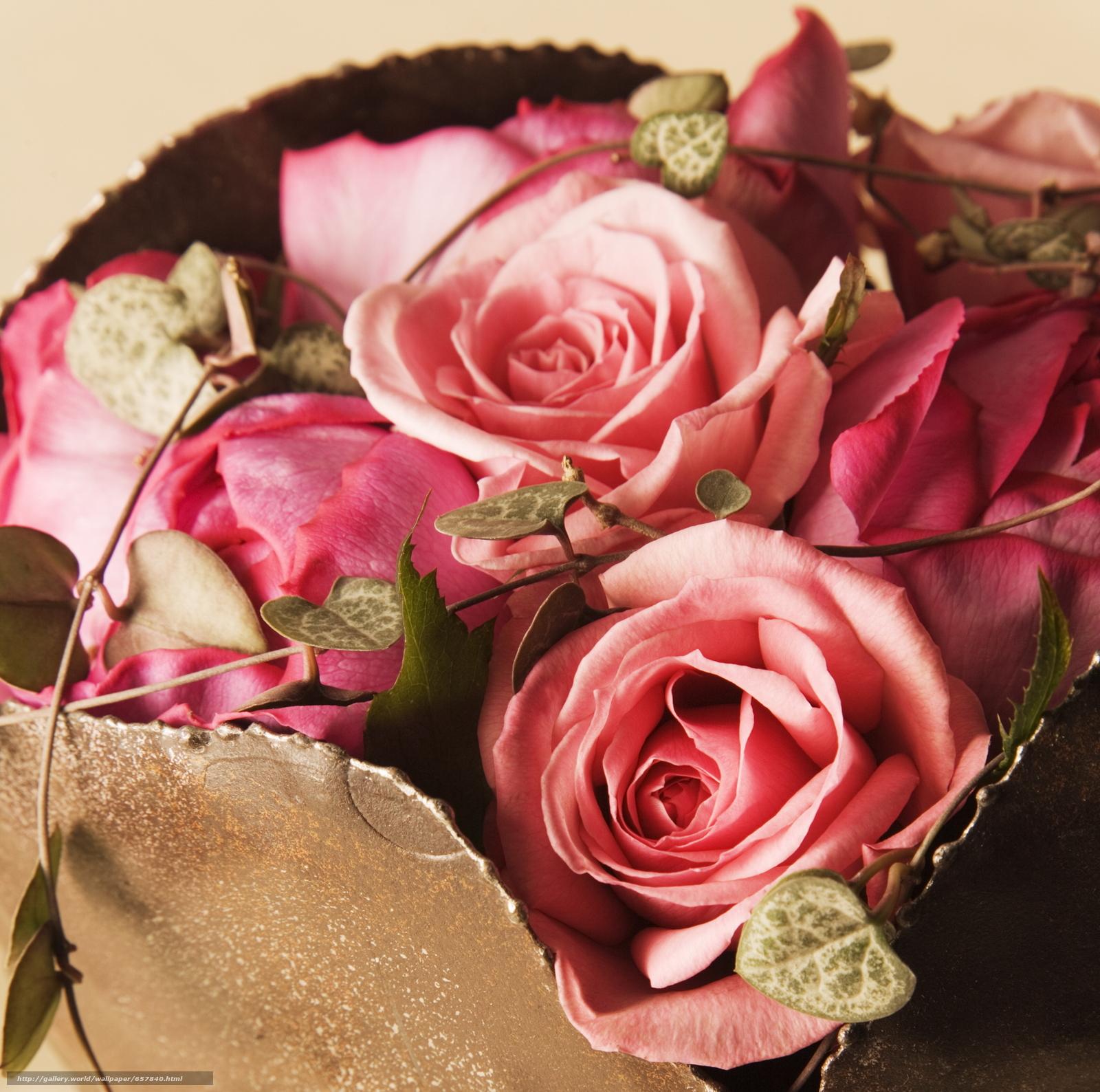 scaricare gli sfondi Fiori,  fiore,  rosa,  Roses Sfondi gratis per la risoluzione del desktop 2094x2078 — immagine №657840