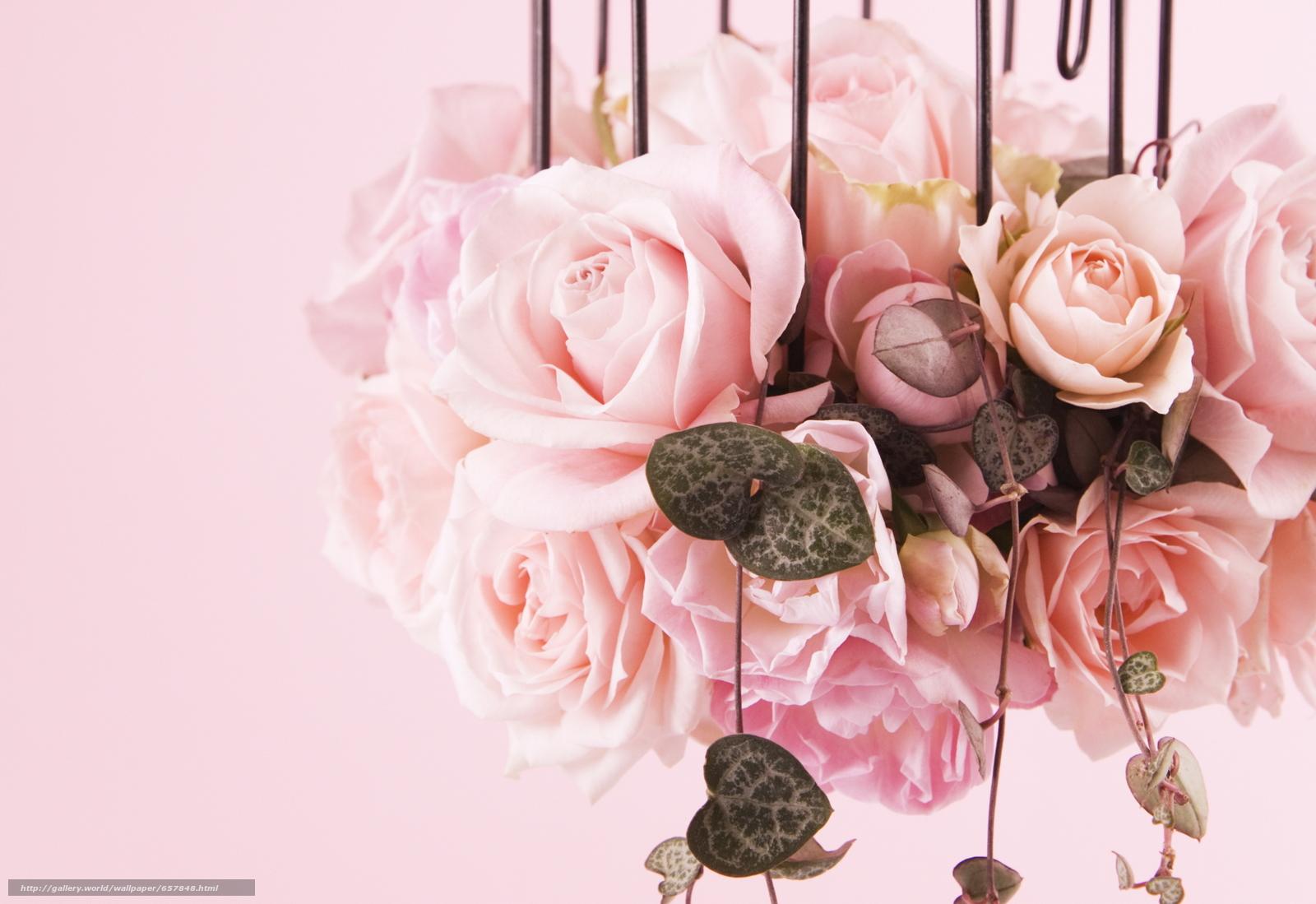 Скачать обои цветы,  цветок,  роза,  розы бесплатно для рабочего стола в разрешении 2094x1438 — картинка №657848