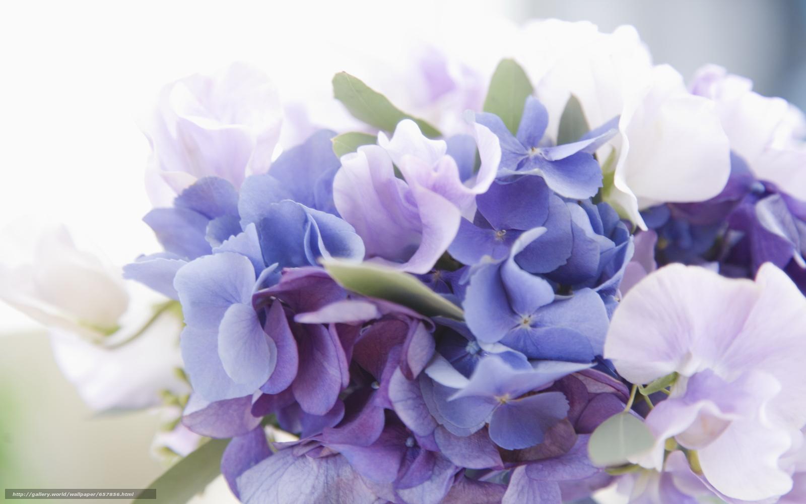 Скачать обои цветок,  цветы,  композиция,  букет бесплатно для рабочего стола в разрешении 2950x1843 — картинка №657856