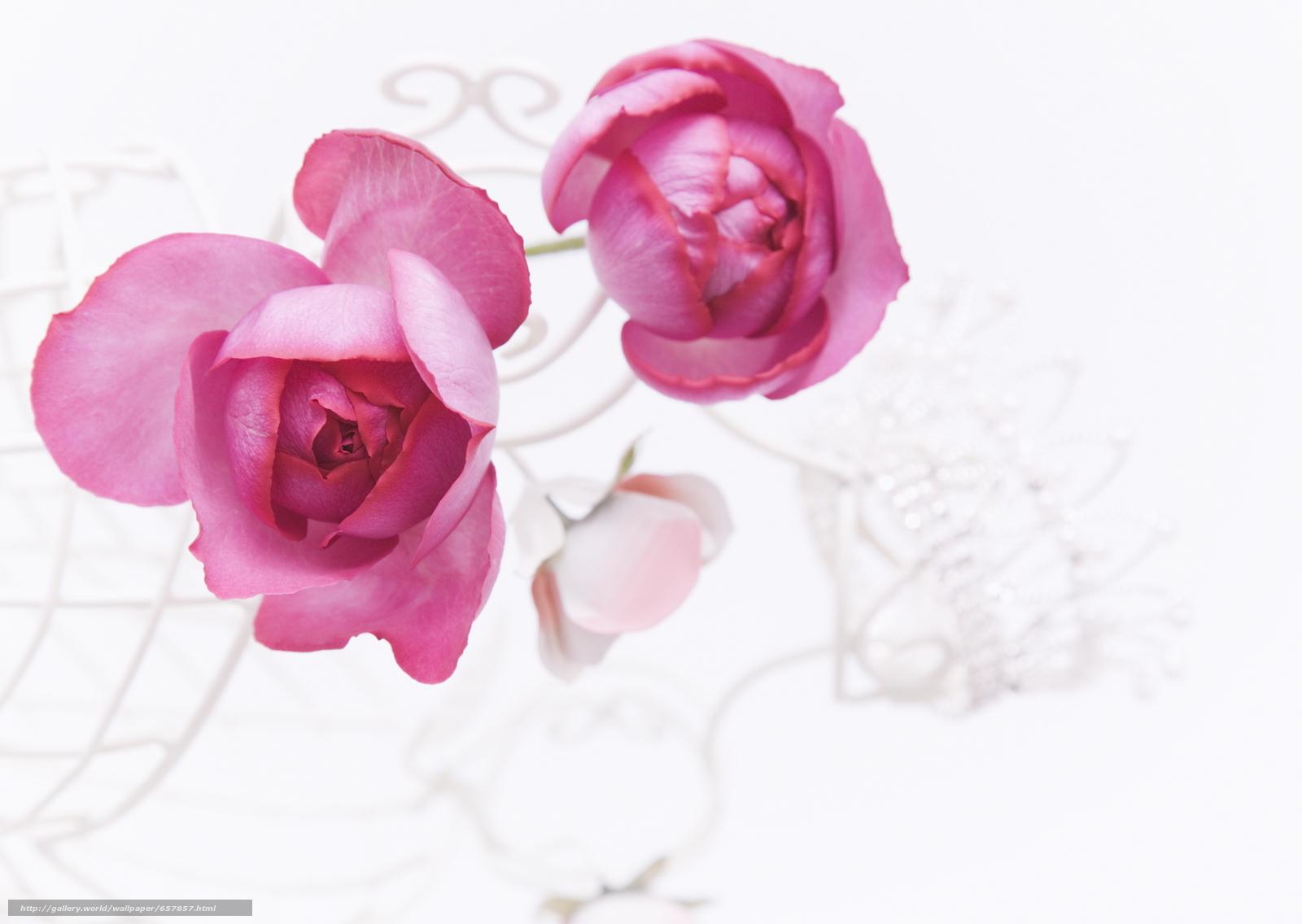 Скачать обои роза,  розы,  цветы,  композиция бесплатно для рабочего стола в разрешении 2950x2094 — картинка №657857