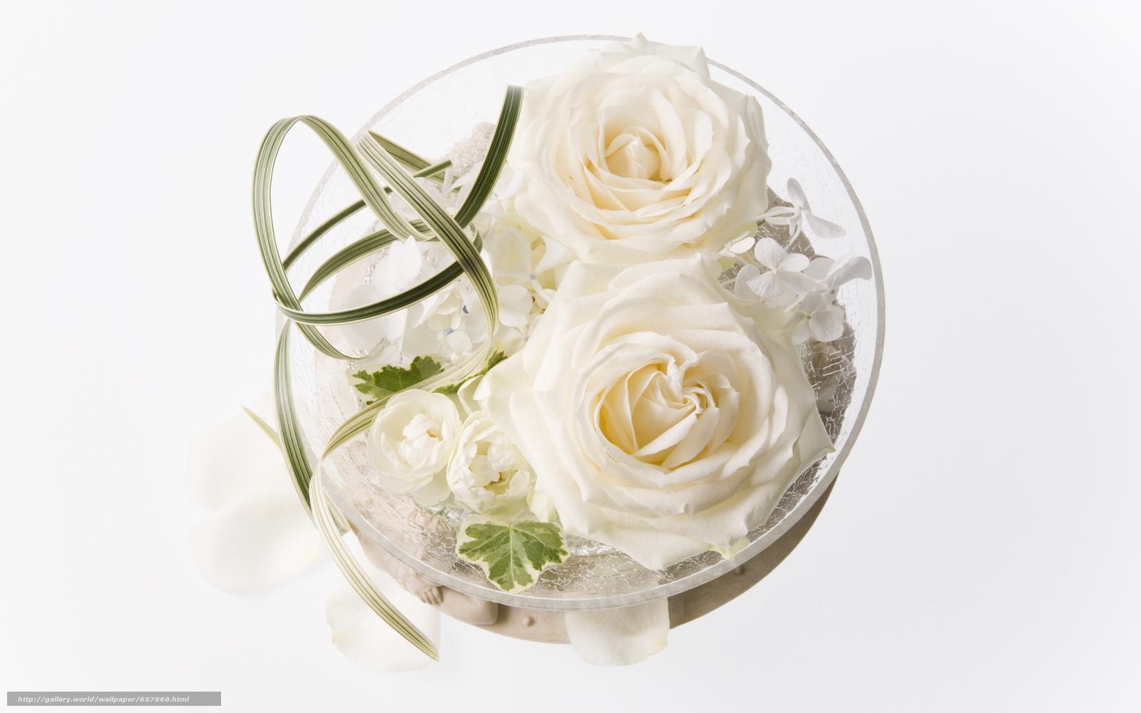Скачать обои цветы,  цветок,  роза,  розы бесплатно для рабочего стола в разрешении 2950x1843 — картинка №657860