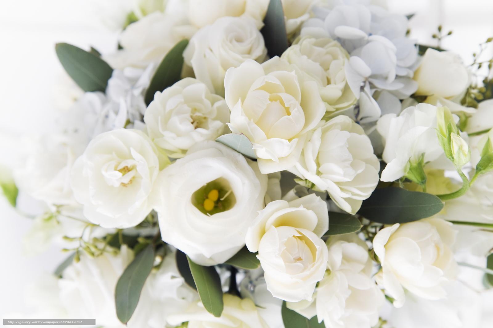 壁紙をダウンロード フラワーズ,  花,  ローズ,  バラ デスクトップの解像度のための無料壁紙 2950x1961 — 絵 №657865