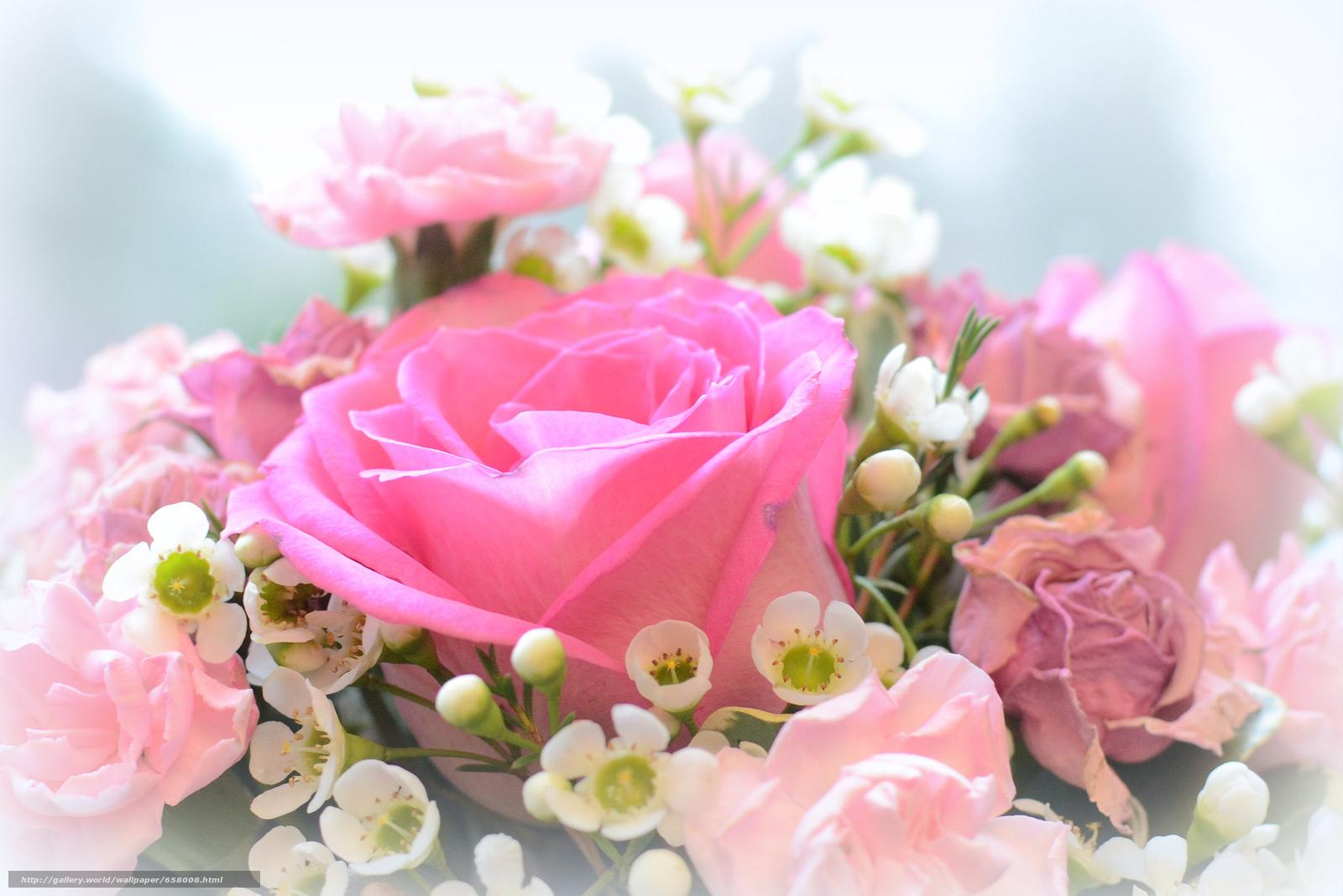 scaricare gli sfondi Fiori,  rosa,  Roses,  COMPOSIZIONE Sfondi gratis per la risoluzione del desktop 2048x1366 — immagine №658008