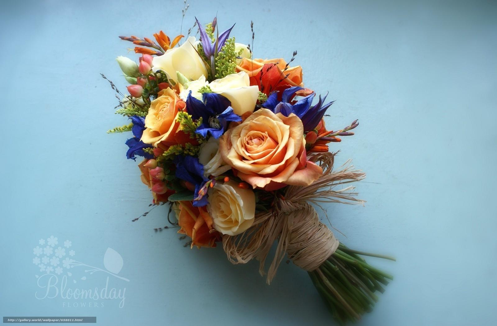 scaricare gli sfondi Fiori,  fiore,  rosa,  Roses Sfondi gratis per la risoluzione del desktop 2048x1346 — immagine №658011