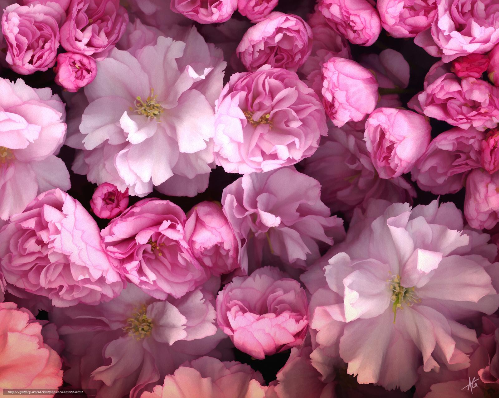 Скачать обои цветок,  цветы,  флора бесплатно для рабочего стола в разрешении 3197x2550 — картинка №658422