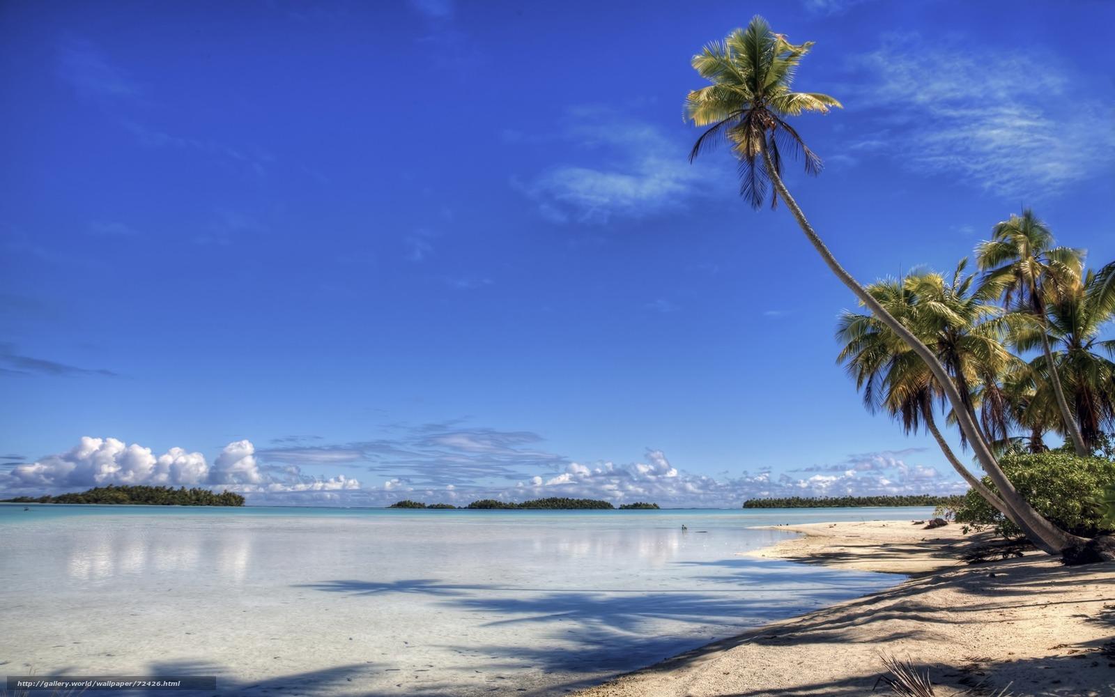 scaricare gli sfondi palma,  isola,  spiaggia,  costa Sfondi gratis per la risoluzione del desktop 1920x1200 — immagine №72426