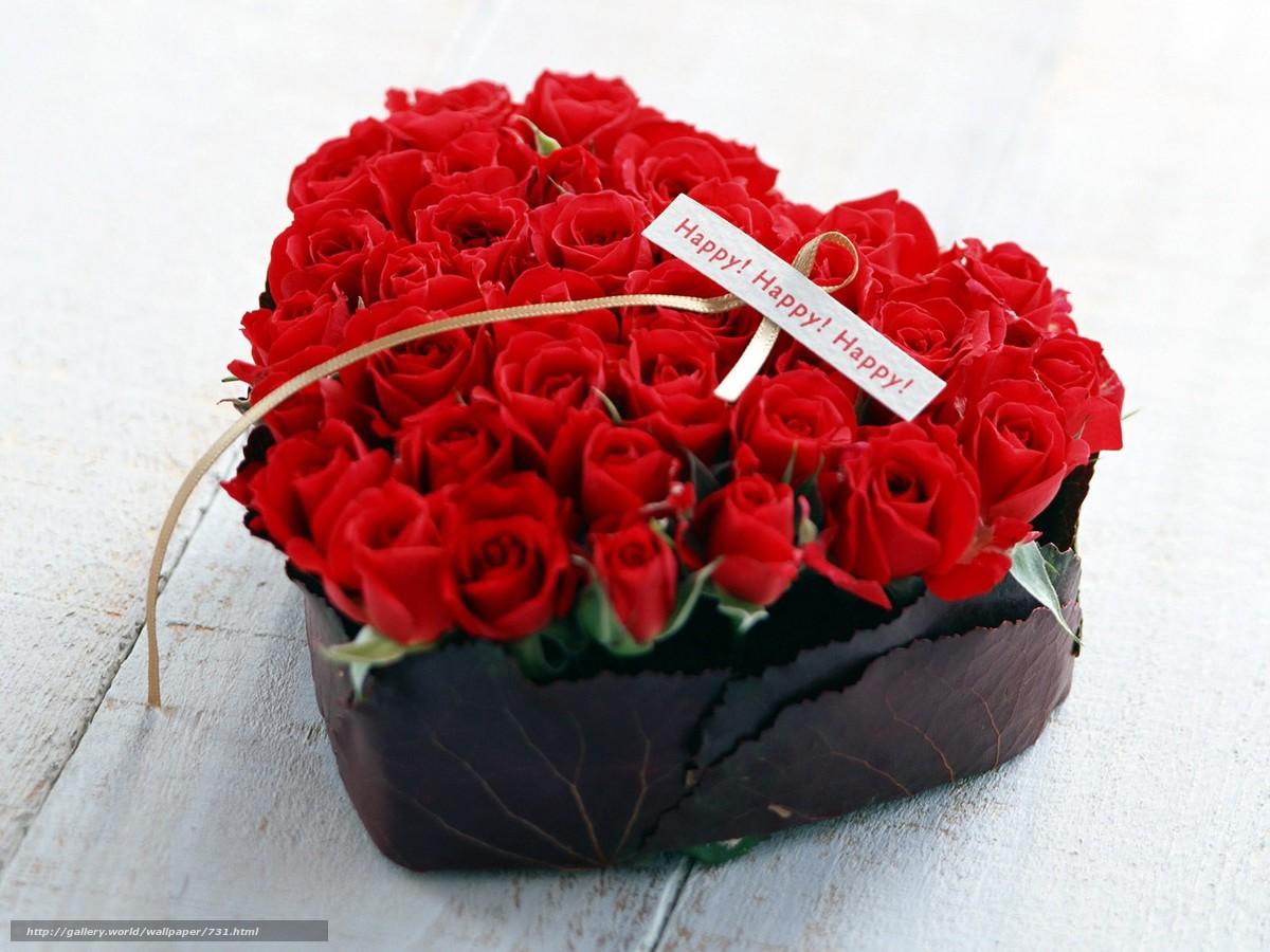 Descargar gratis flor,  Rosa,  rojo Fondos de escritorio en la resolucin 1600x1200 — imagen №731