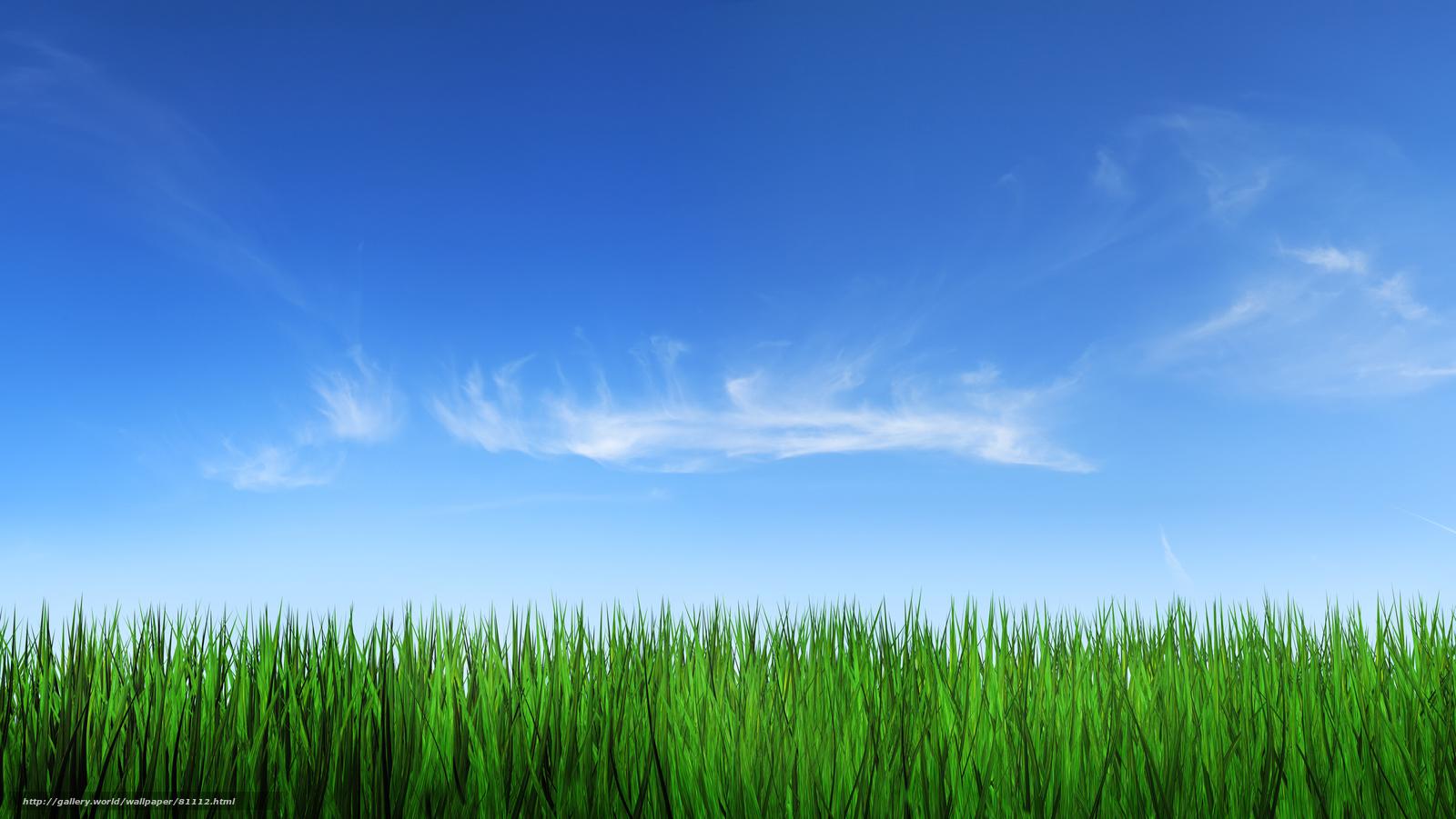 scaricare gli sfondi paesaggi,  erba,  cielo,  foto Sfondi gratis per la risoluzione del desktop 2560x1442 — immagine №81112