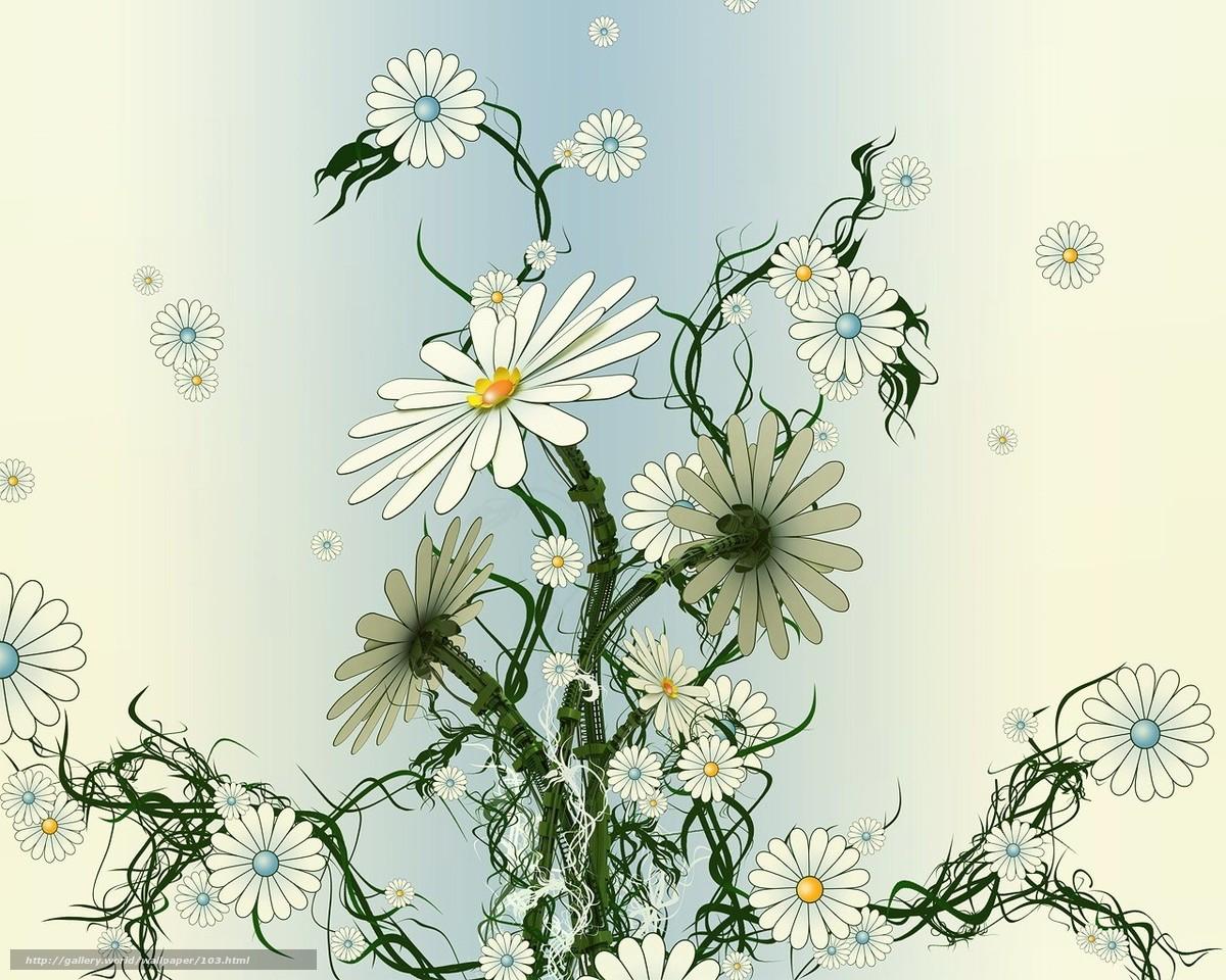 плоский, сухой, цветы, вялый, ромашки