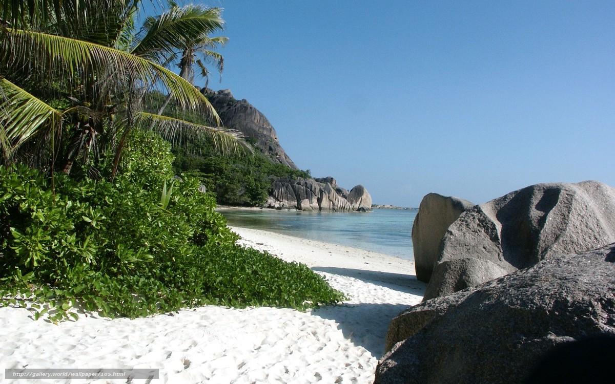 mar, pedras, areia, cana, praia tropical