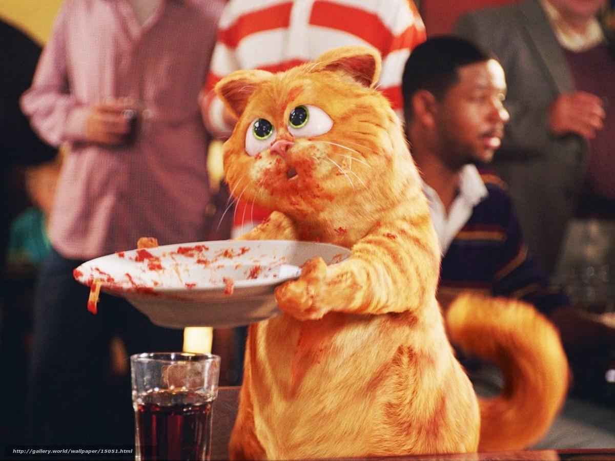 Смотреть онлайн кот гарфилд 11 фотография