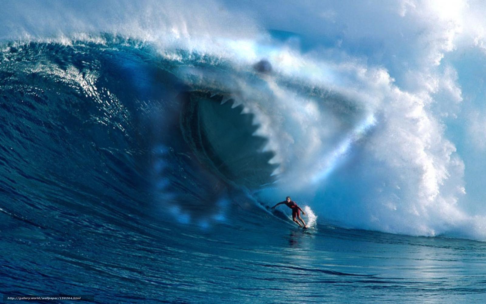 ловить волну на море дайвер или серфингист