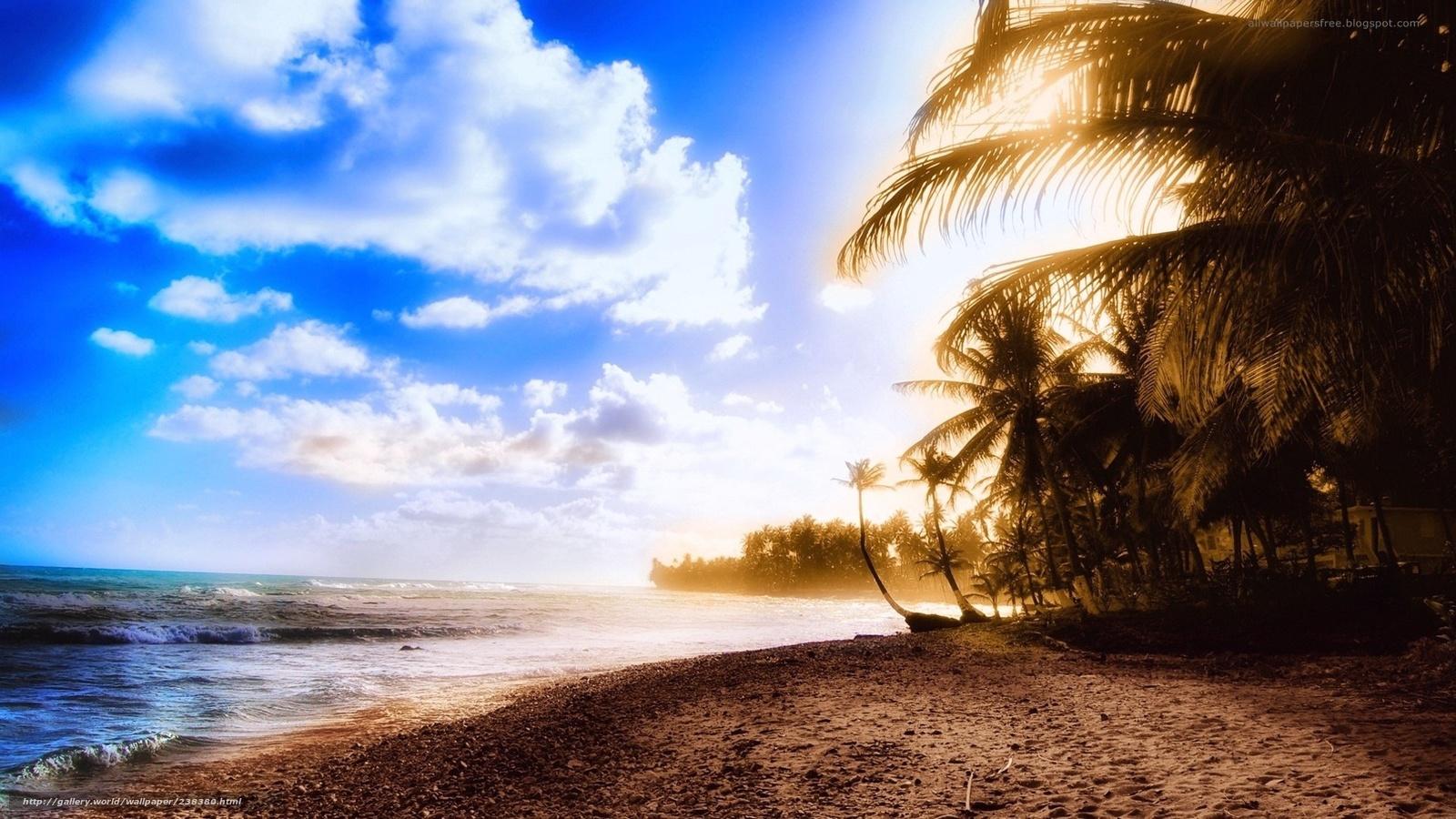 Смотреть в hd качестве новинкииндустрия развлечений/private tropical 24 21 фотография