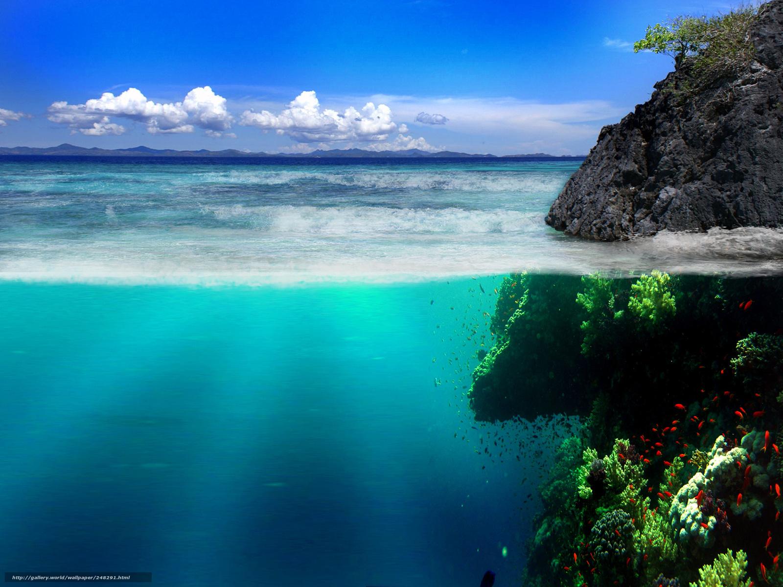 Фото алеты акеан 25 фотография