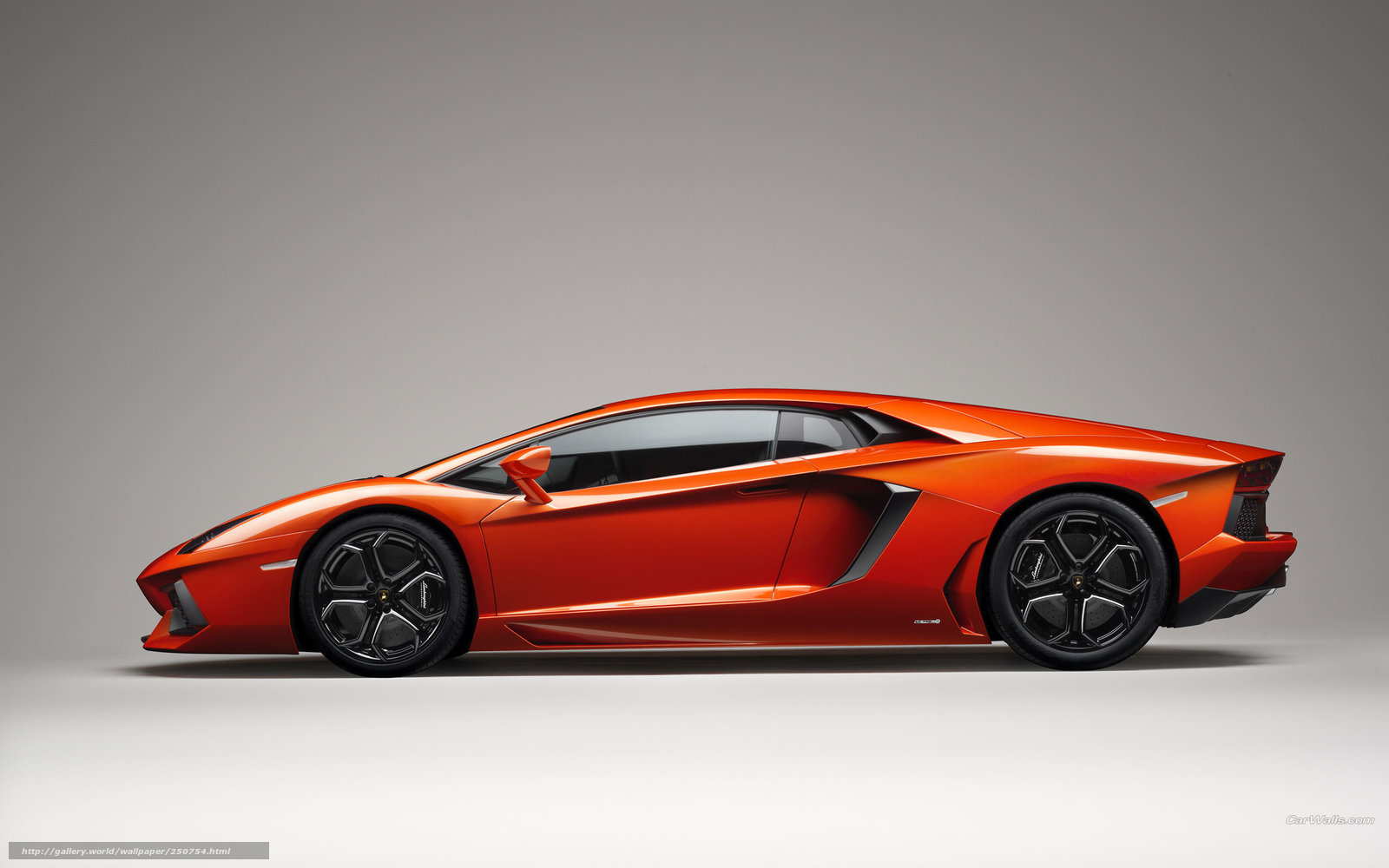 Lamborghini countach авто машины автомобили