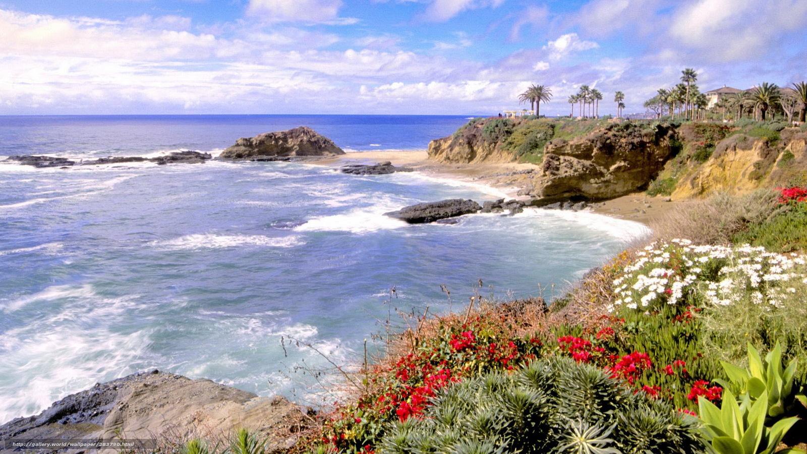 Фото красивых цветов пейзажей морей