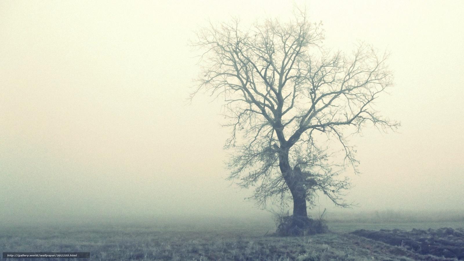 На пятницу пензенцам пообещали дождь и туман