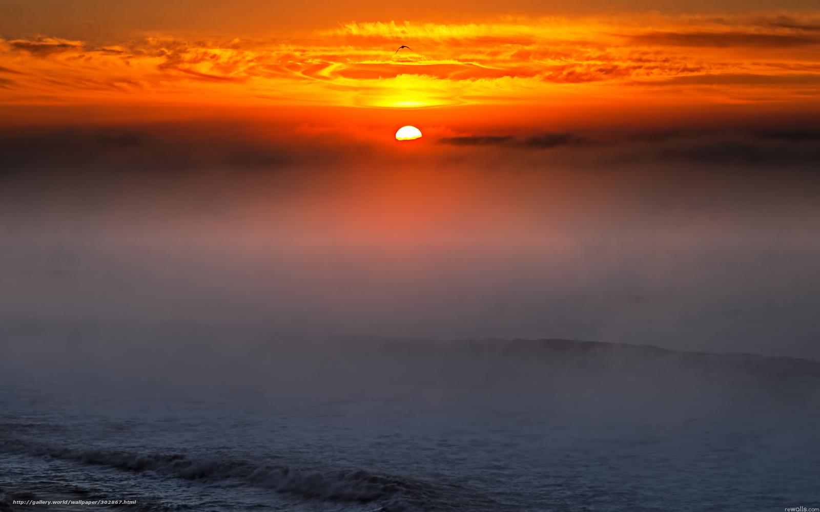 Обои, картинки, скачать, небо, туман, деревья, лес автор: london211 / размер: 4474x2911 / теги: небо, туман, деревья