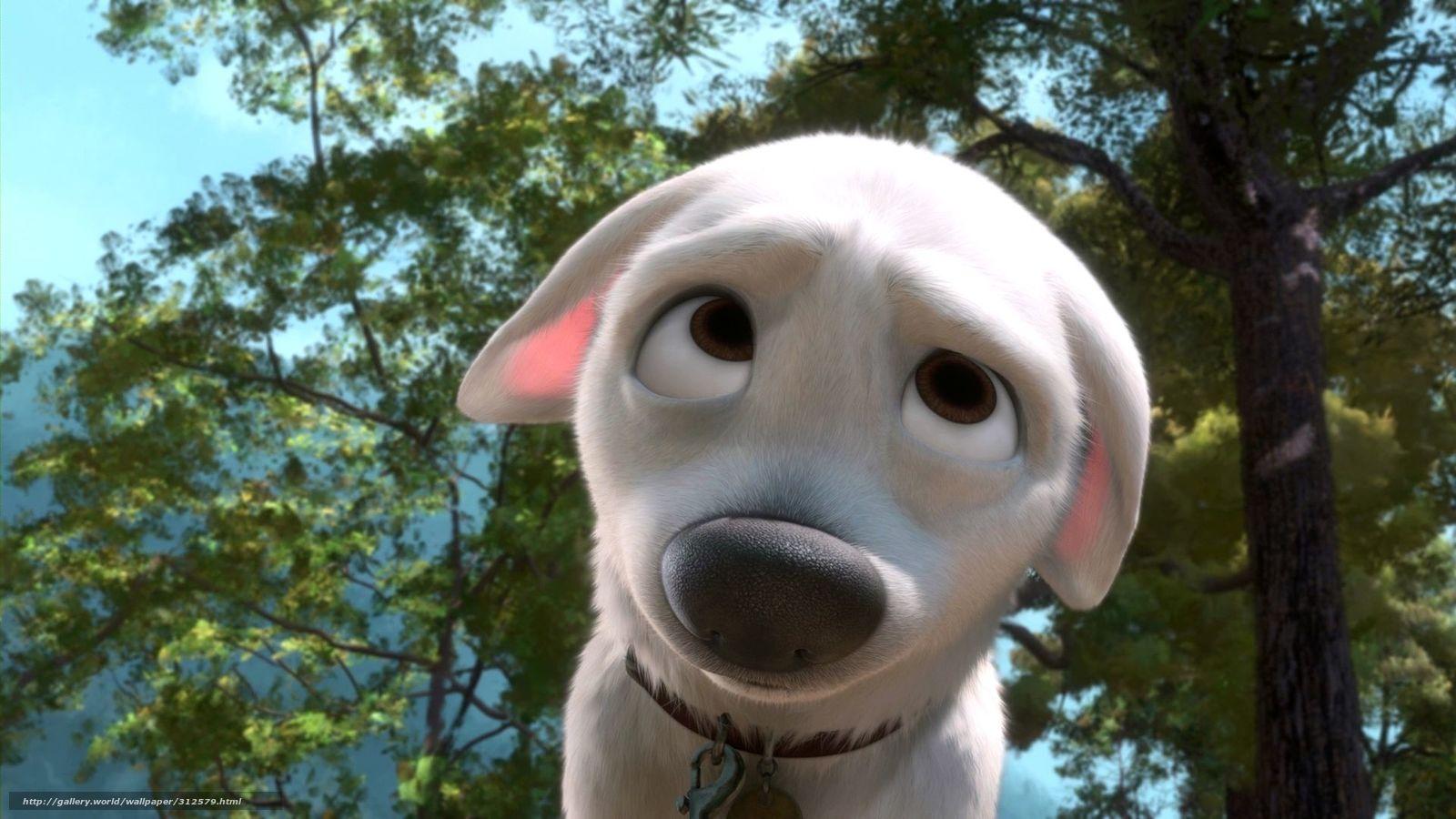 Scaricare gli sfondi cartone animato volt cane bianco