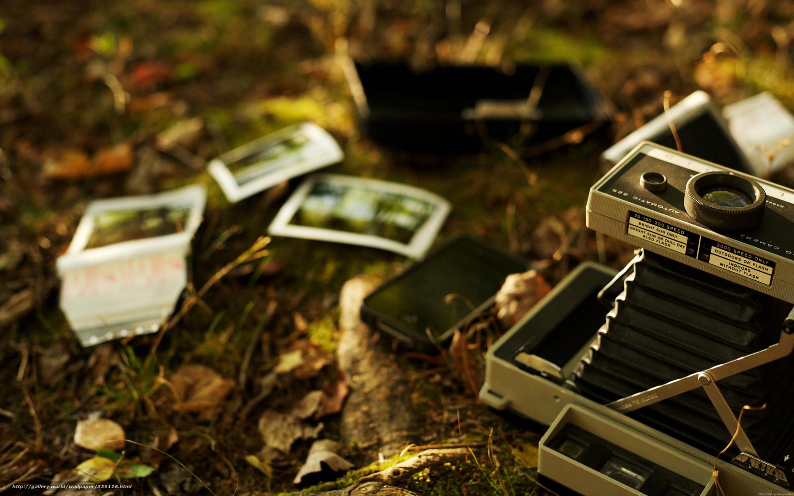Фото из найденного фотоаппарата 22 фотография