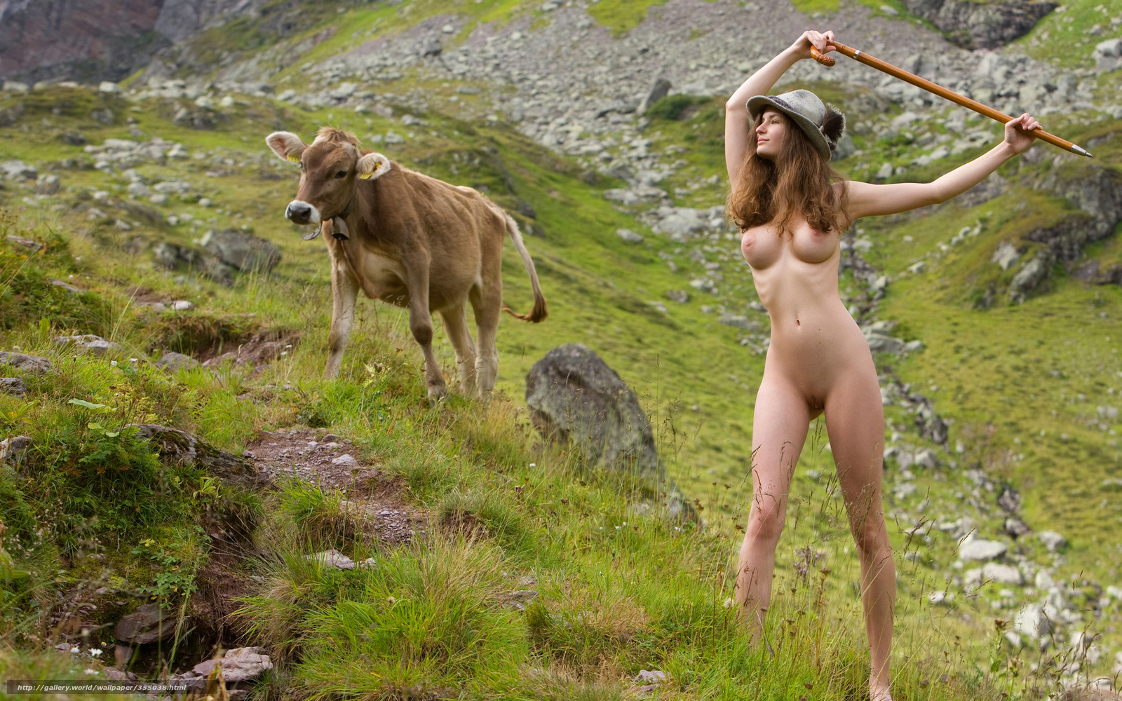 Download man cow sex fucks pics