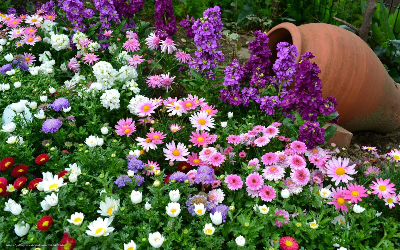 Красивые цветы своими руками фото