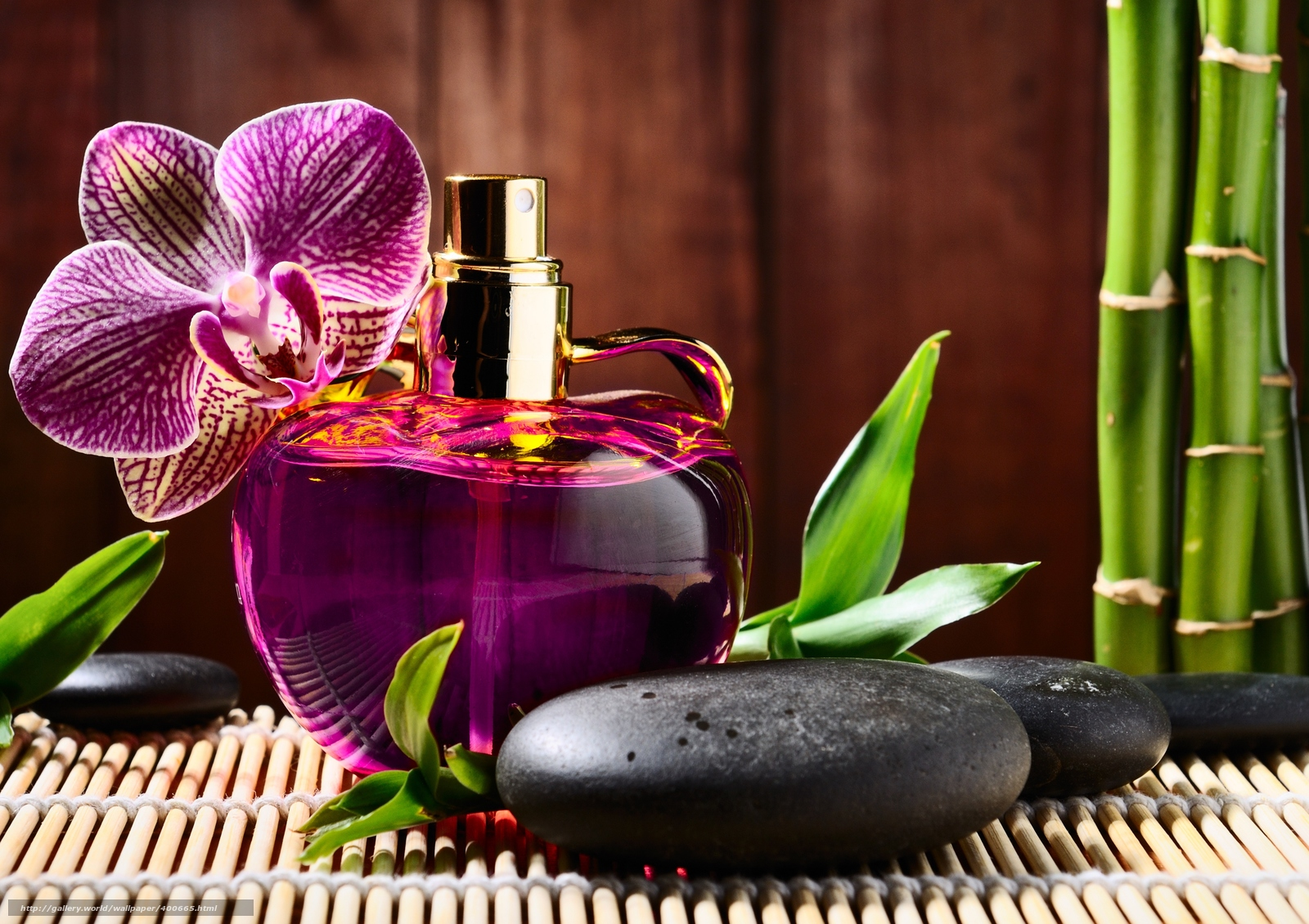 Wallpaper orchidee steine  Bambus — wallpaper und Bilder auf Ihrem Desktop / Seite 6 / de ...