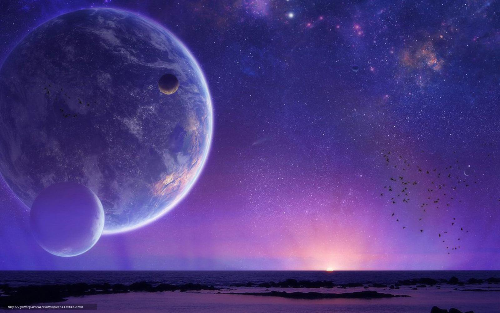 Скачать на телефон обои фото картинку на тему небо, планета, закат, птицы, разширение 1680x1050