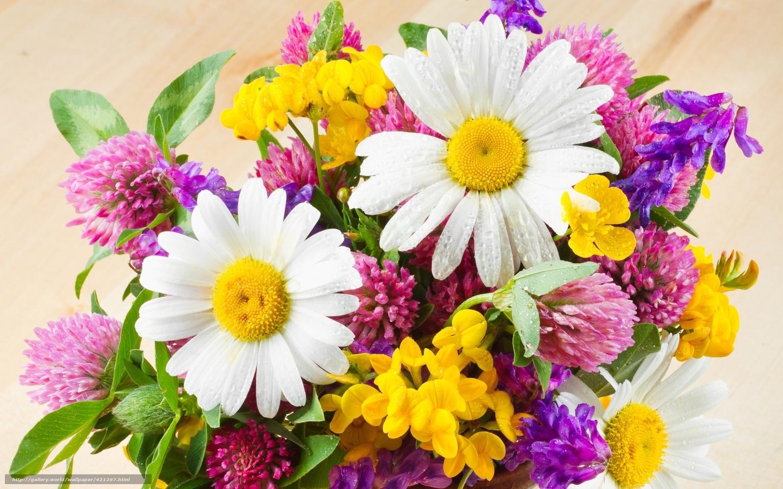 Полевые цветы букеты