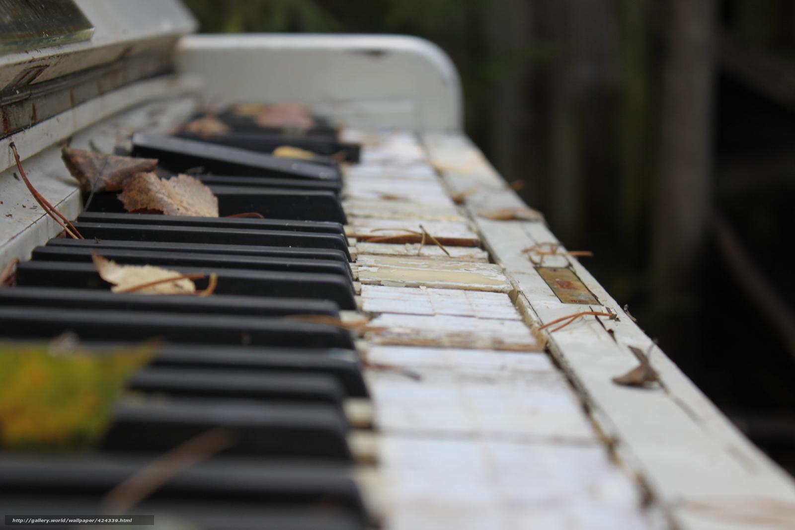 枯葉とピアノ。