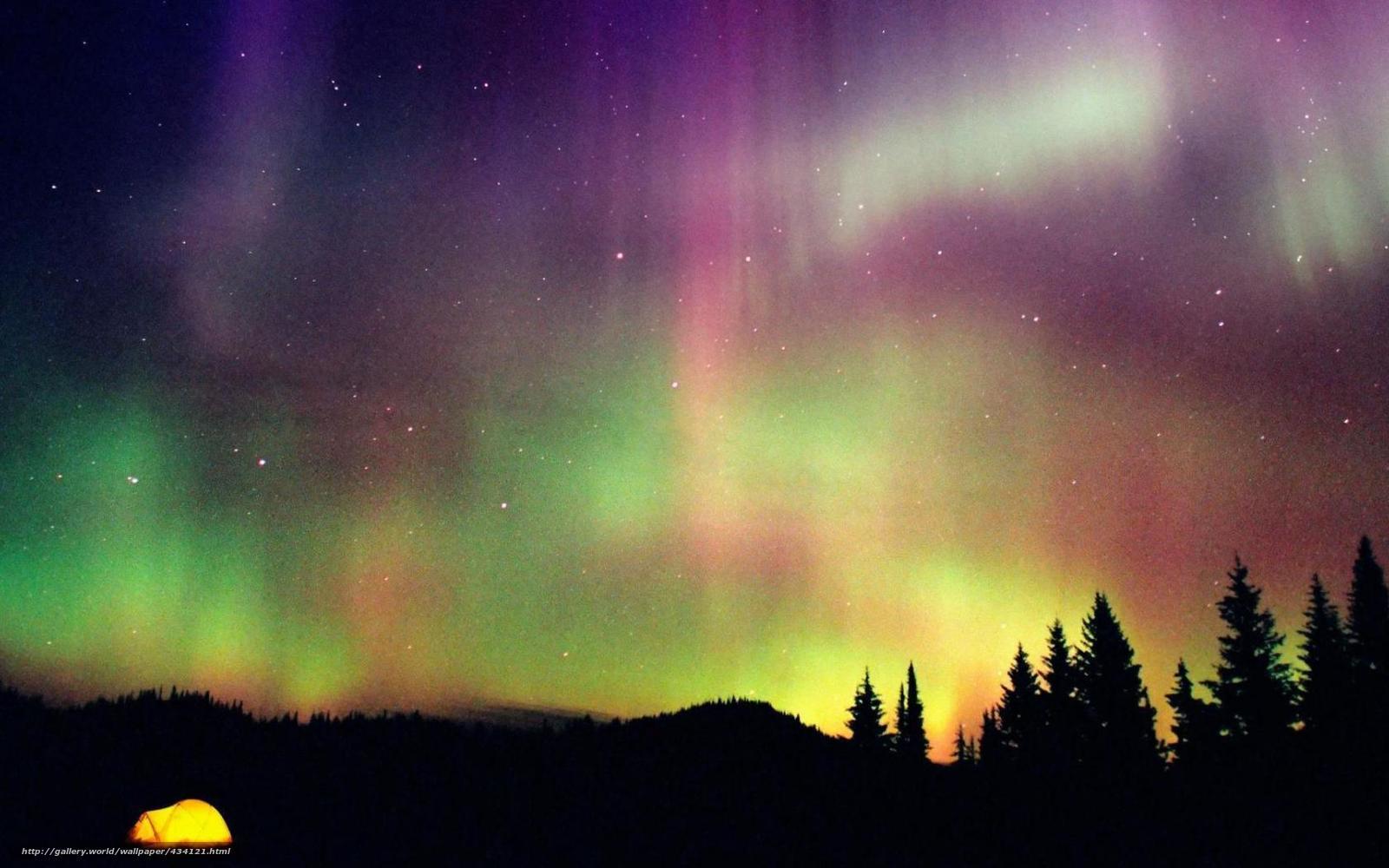 Скачать на телефон обои фото картинку на тему лес, небо, северное сияние, разширение 1680x1050