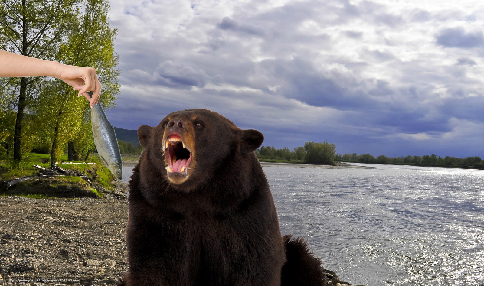 рыбалка бурый медведь форум