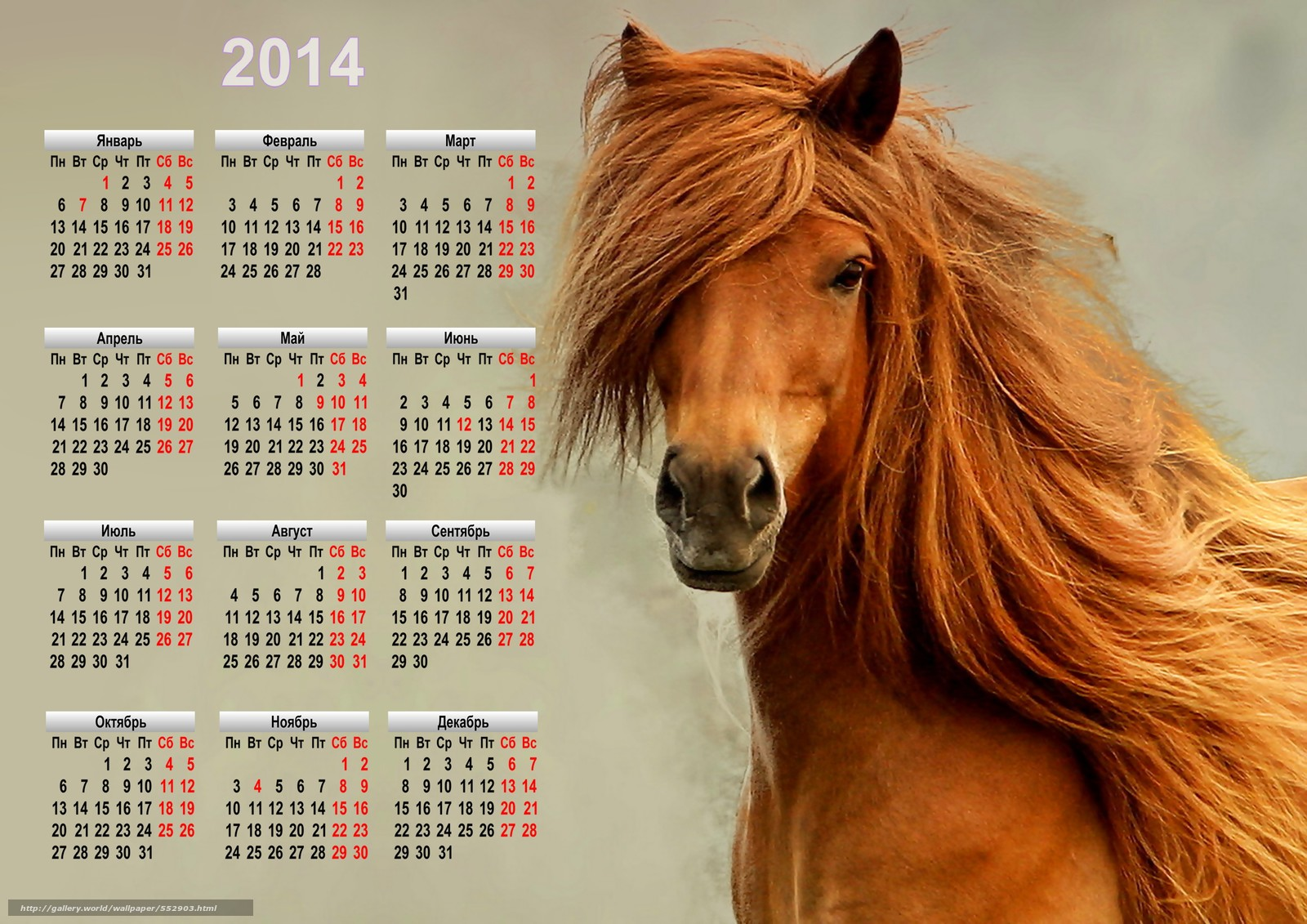Обои календарь год лошади 2014