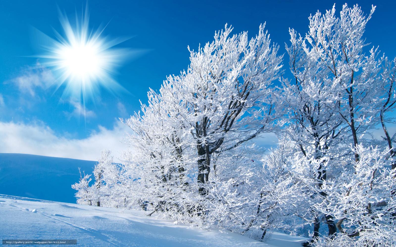 Winter nature wallpaper desktop