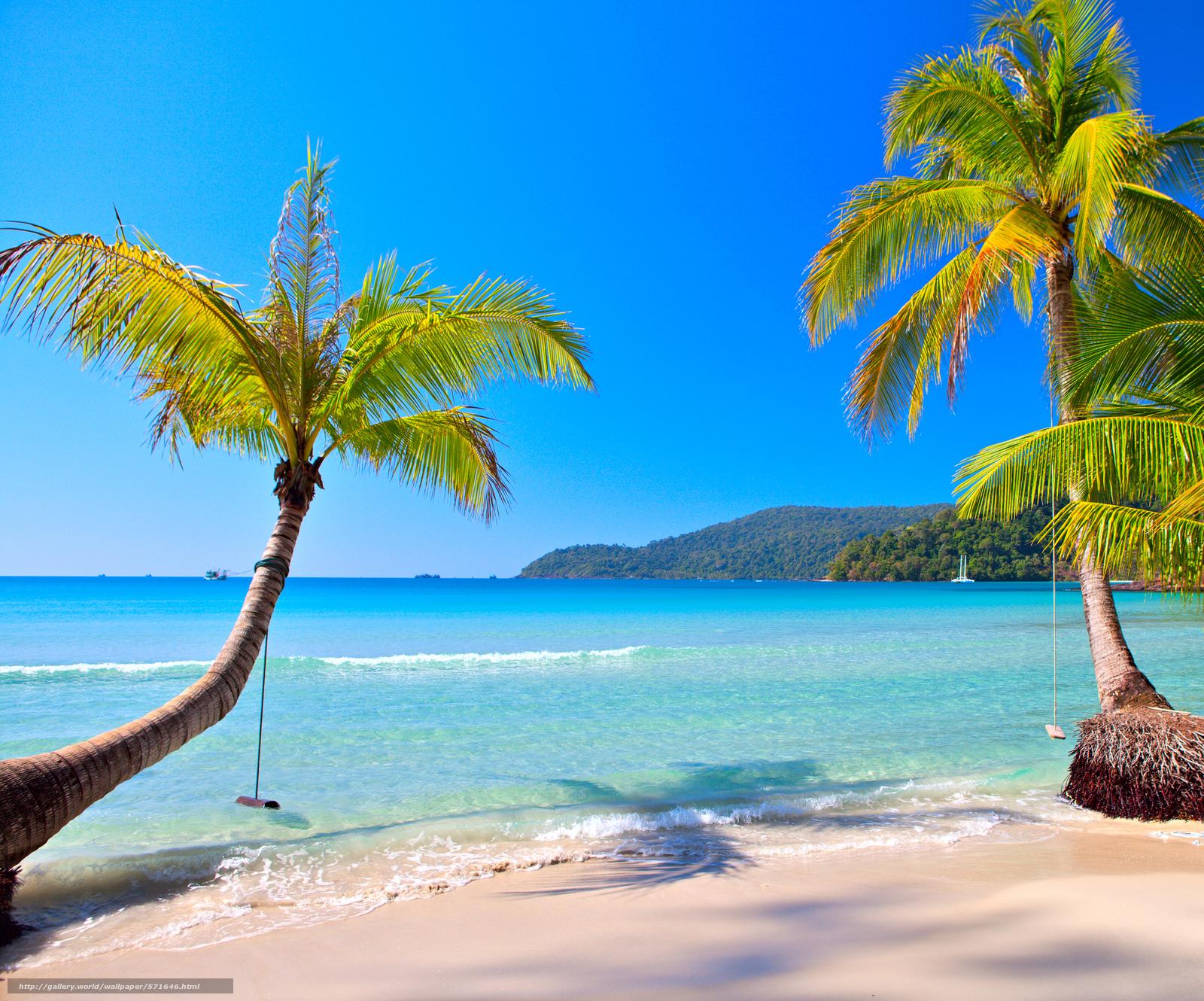 Palm beach wordpress theme