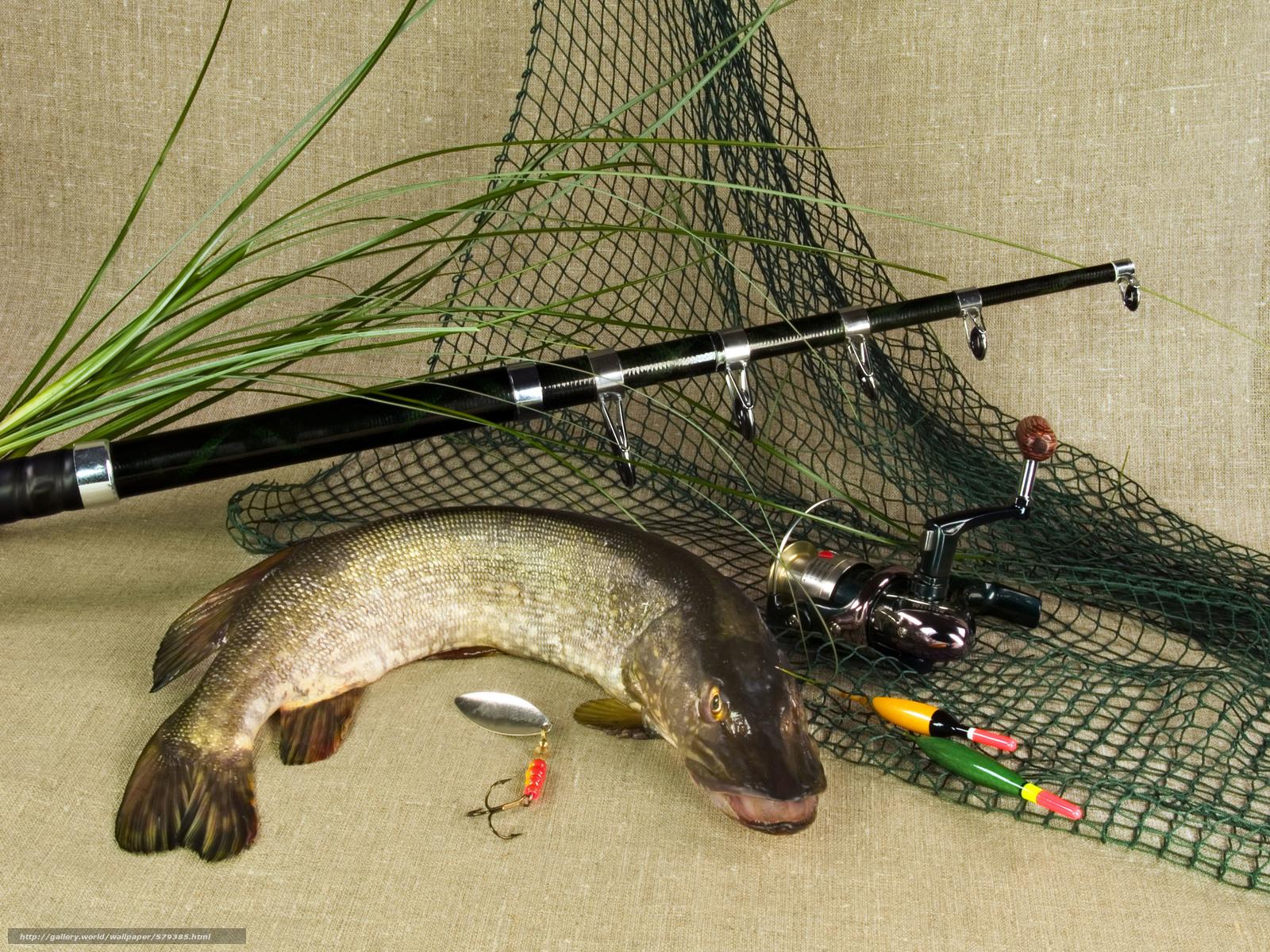 для рыбалки фото